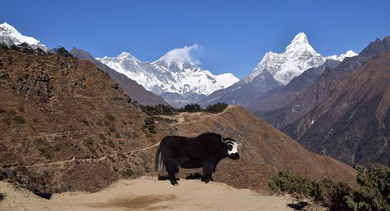 Everest, Lhoce, Ama Dablam