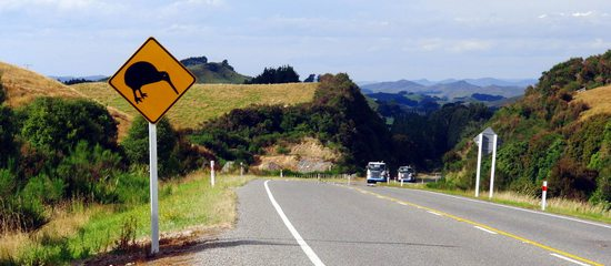 on the kiwi road