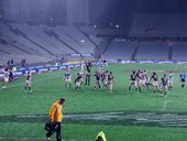 rugby auckland vs wellington