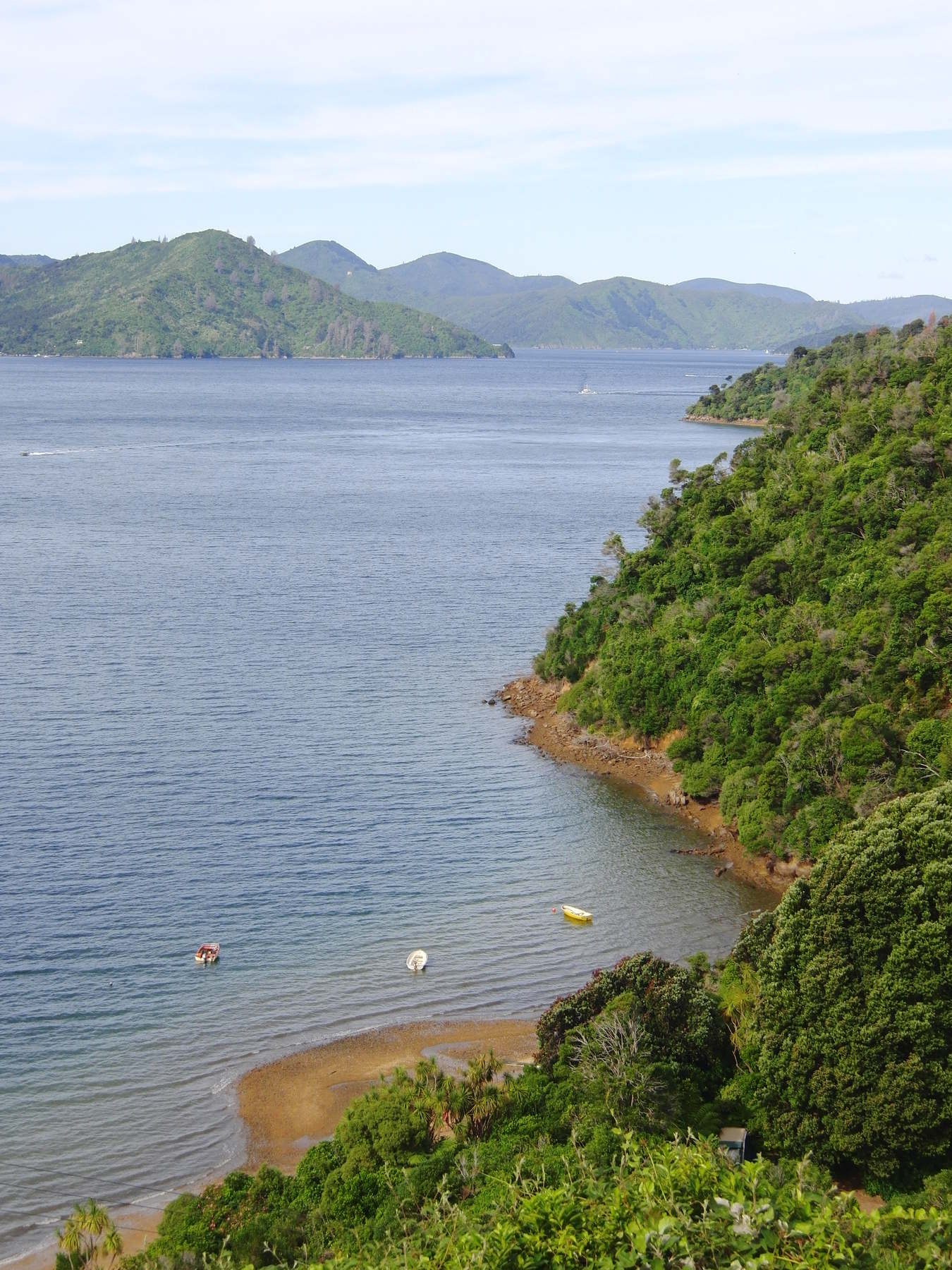 queen charlotte sound vyhledy